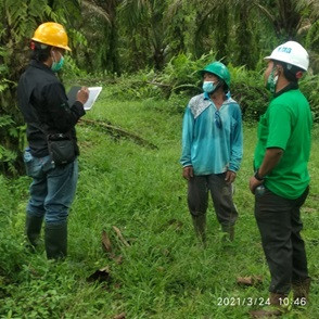 P&G dan Give and Go Dukung Petani Swadaya Indonesia